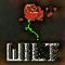 Wilt Last Blossom